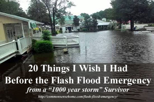 20 Things I Wish I Had Before the Flash Flood Emergency - I thought I was prepared for flooding, but I wasn't prepared for record breaking floods. Learn from my mistakes.