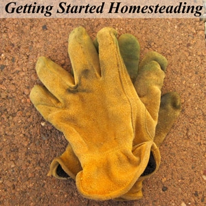 "Get Started Homesteading - Over 20 Posts to Help You Become More Self-Reliant, Plus FREE E-book ""Common Sense Homesteading 101: 7 Steps to Become more Self-Reliant Now"" with subscription"