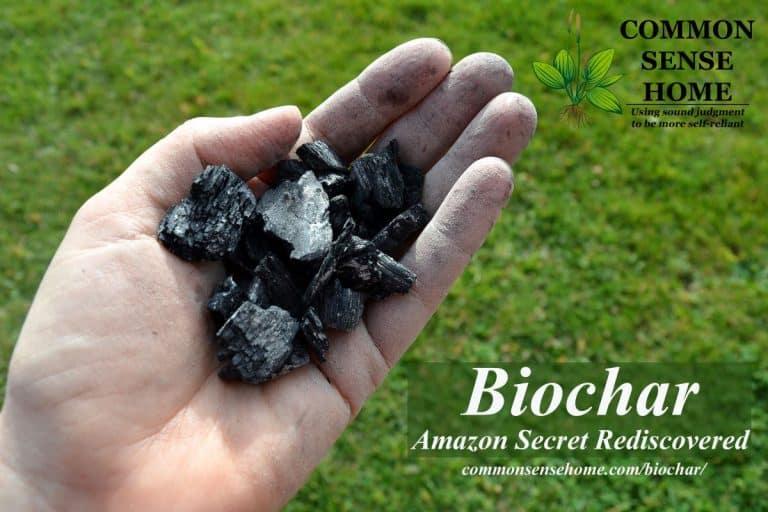 Biochar – Amazon Secret Rediscovered