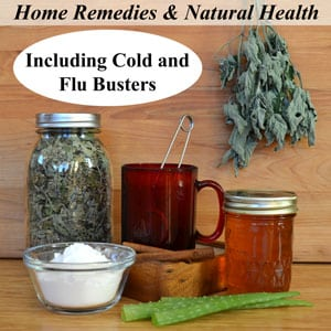 Home Remedies and Natural Health, Including Cold and Flu Busters