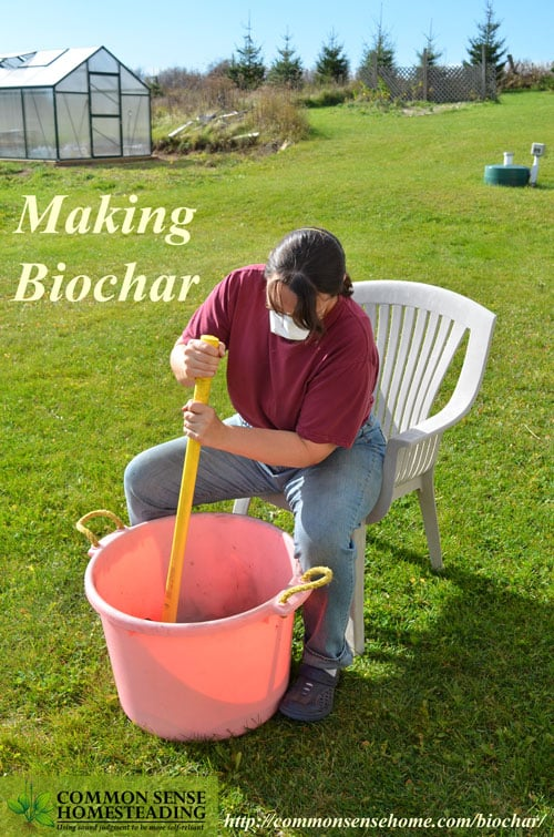 Biochar has been called a modern twist on Terra Preta, the legendary man-made fertile soil of the Amazon, but you need to use it correctly to enrich your garden.