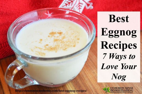 Best Eggnog Recipes #7 – Eggless Eggnog