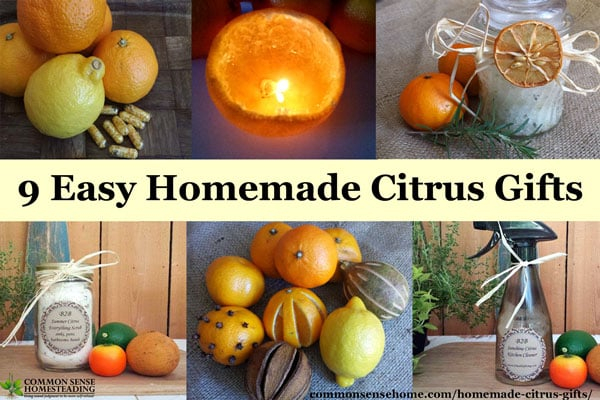 9 Easy Homemade Citrus Gifts – Great for Little Helpers at Gift Giving Time