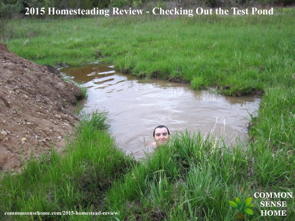 2015 Homestead Review - Checking out the test pond