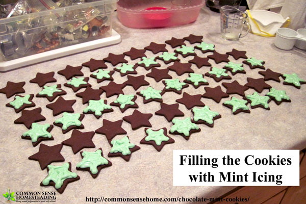 Homemade chocolate mint cookies - serve them as a mint chocolate sandwich cookie, or skip the filling and dip them in melted chocolate for decadent treat.