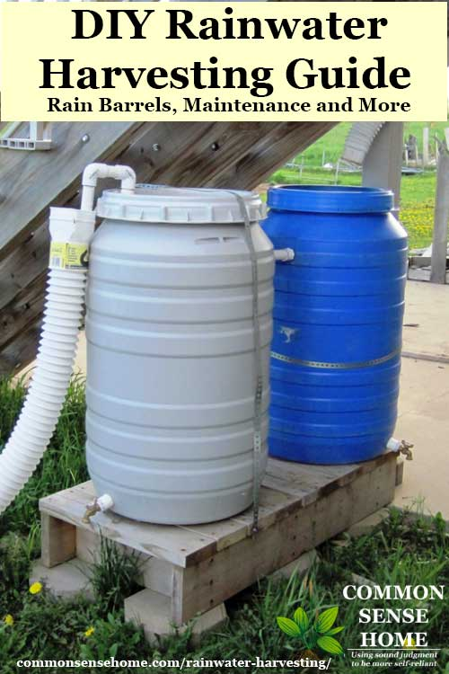 two rain barrels for rainwater collection