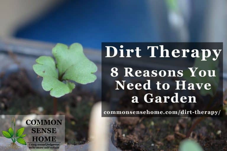 Dirt Therapy – 8 Reasons You Need to Have a Garden