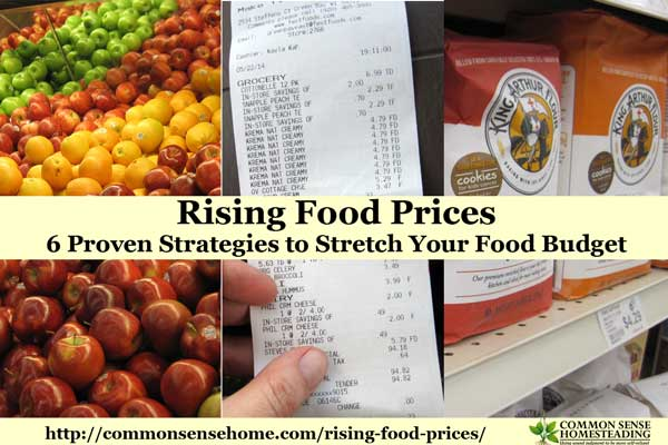 Rising Food Prices – 6 Proven Strategies to Stretch Your Food Budget
