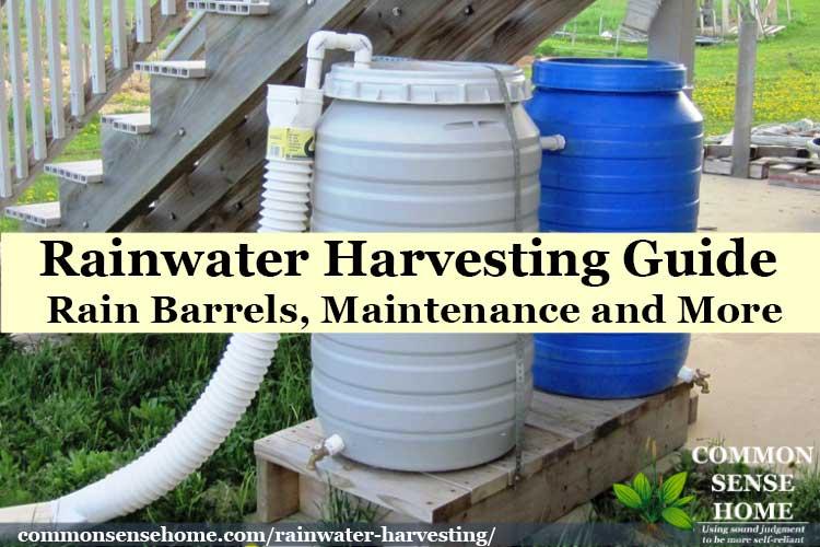 DIY rain barrel system with two water barrels