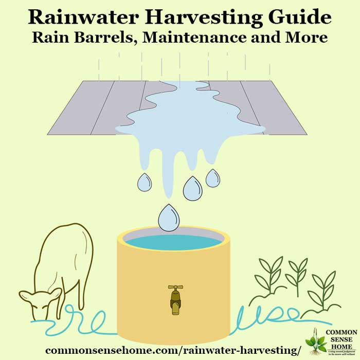 rainwater harvesting guide showing rainwater collection and uses