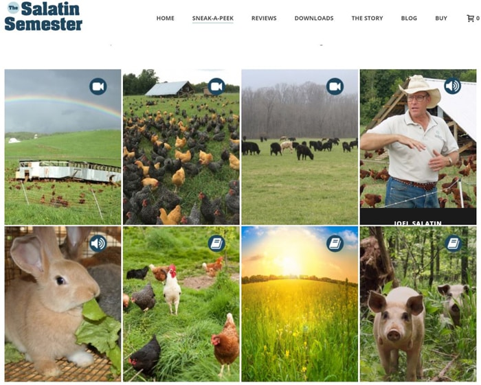 Get a Sneak Peak of the Salatin Semester Small Farming Study Course