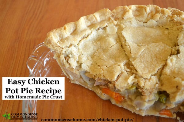Easy chicken pot pie recipe with flaky, homemade crust, rich broth and plenty of meat and vegetables. Works great to make leftover chicken into a new meal.