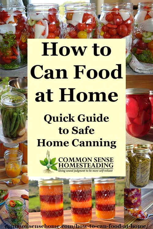 Home food preservation 10 ways to preserve food at home how to can food at home the difference between water bath canning and pressure canning forumfinder Image collections