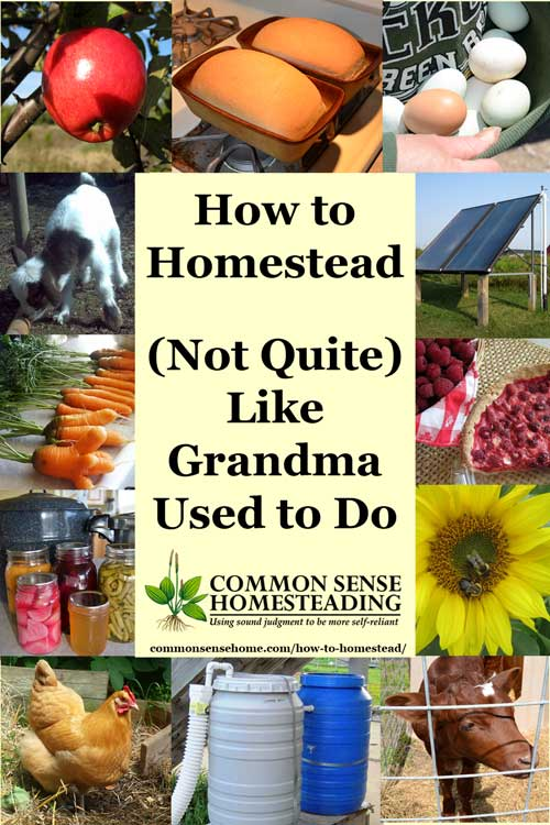 Green living review how to homestead not quite like for Is there any homestead land left in america