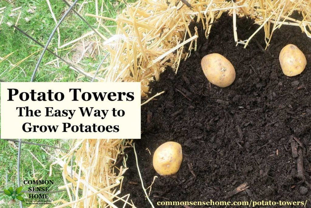 "potato tower with straw,soil and potatoes. Text overlay ""Potato Towers - The Easy Way to Grow Potatoes"""