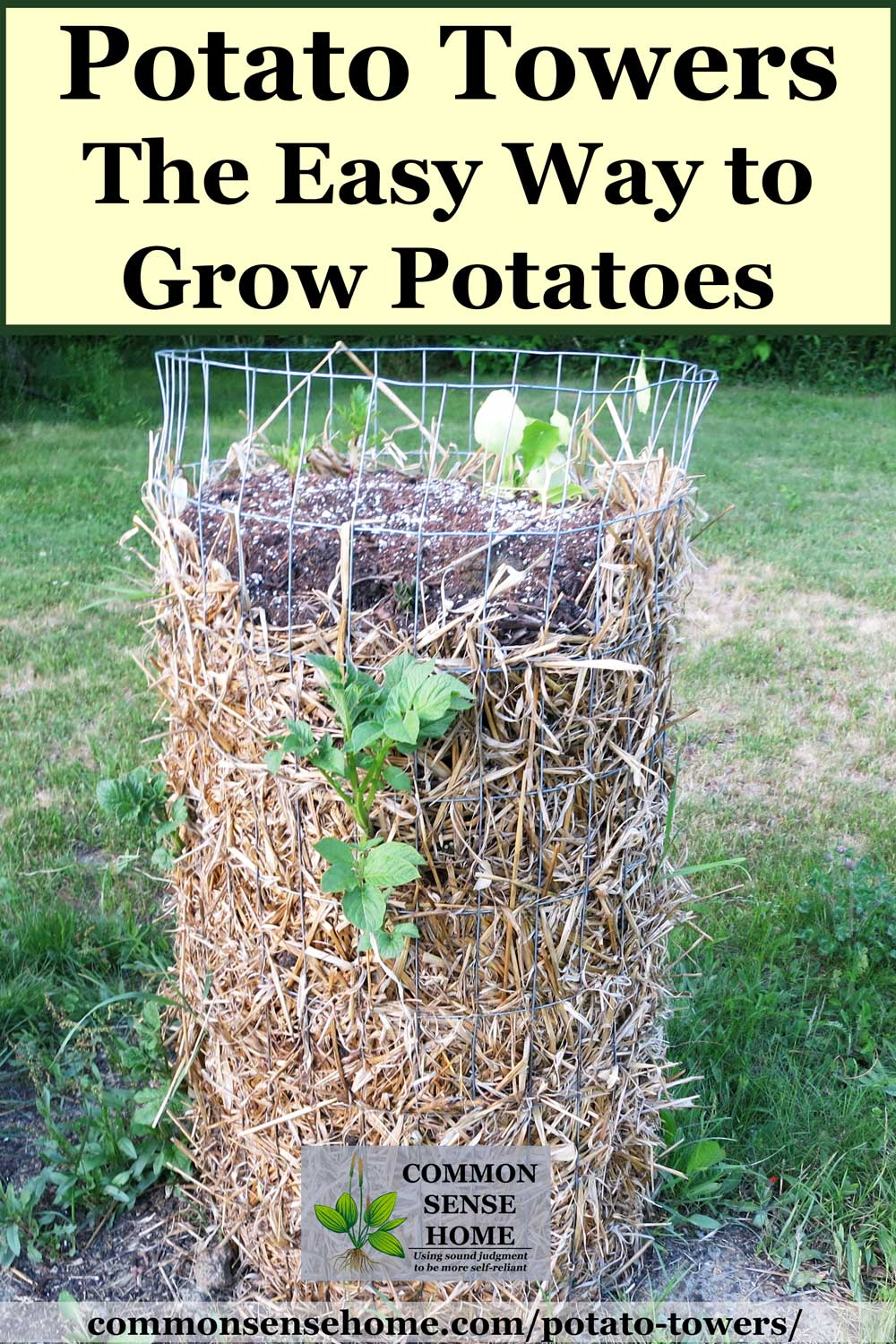 potato tower with straw