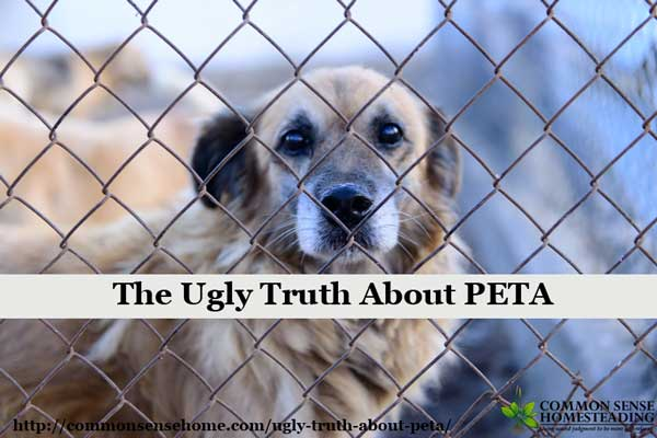 The Ugly Truth About PETA, promoting terror campaigns and killing animals, targeting the people who work to provide the best possible lives for animals.
