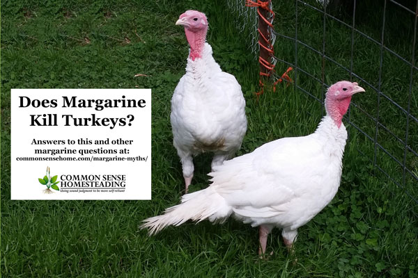 Does Margarine Kill Turkeys? Answers to This and Other Margarine Myths