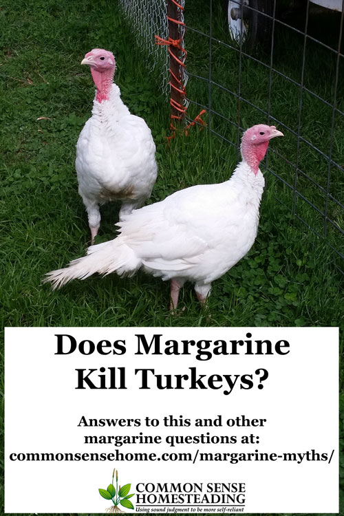 Margarine myths or facts? Find out the truth about margarine killing turkeys, being one molecule away from plastic, having added colors and more.