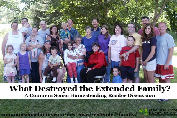 A Common Sense Homesteading reader discussion on the state of the extended family - what caused its breakup, and whether it's time for it to return.