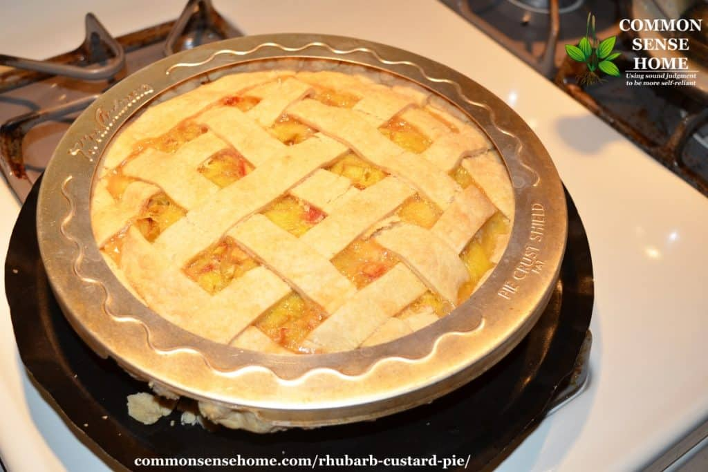 Rhubarb custard pie fresh out of the oven, sitting a pie drip pan with pie crust protector around edge of pie