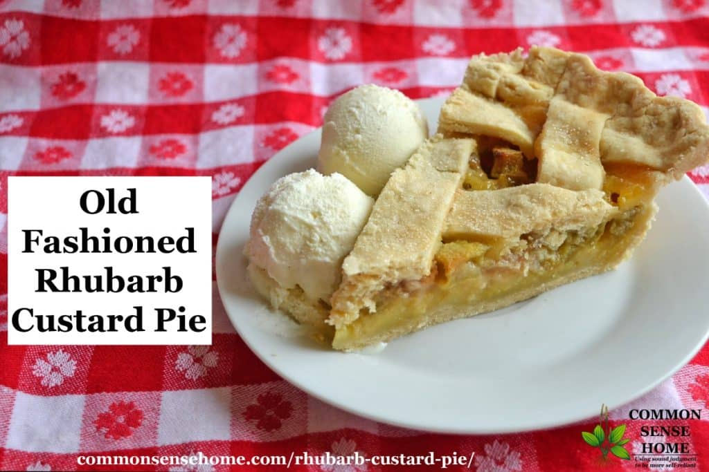 "Slice of rhubarb custard pie with ice cream on a white plate with red and white tablecloth, text overlay ""Old Fashioned Rhubarb Custard Pie"""