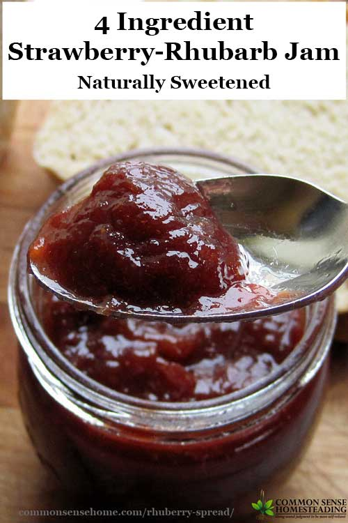 Delicious Rhuberry Spread - Just 4 ingredients - Sweetened with apple juice concentrate instead of sugar and thickened with natural apple pectin.