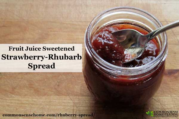 Rhuberry Spread – Naturally Sweetened Strawberry-Rhubarb Jam