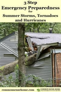 House hit by fallen tree