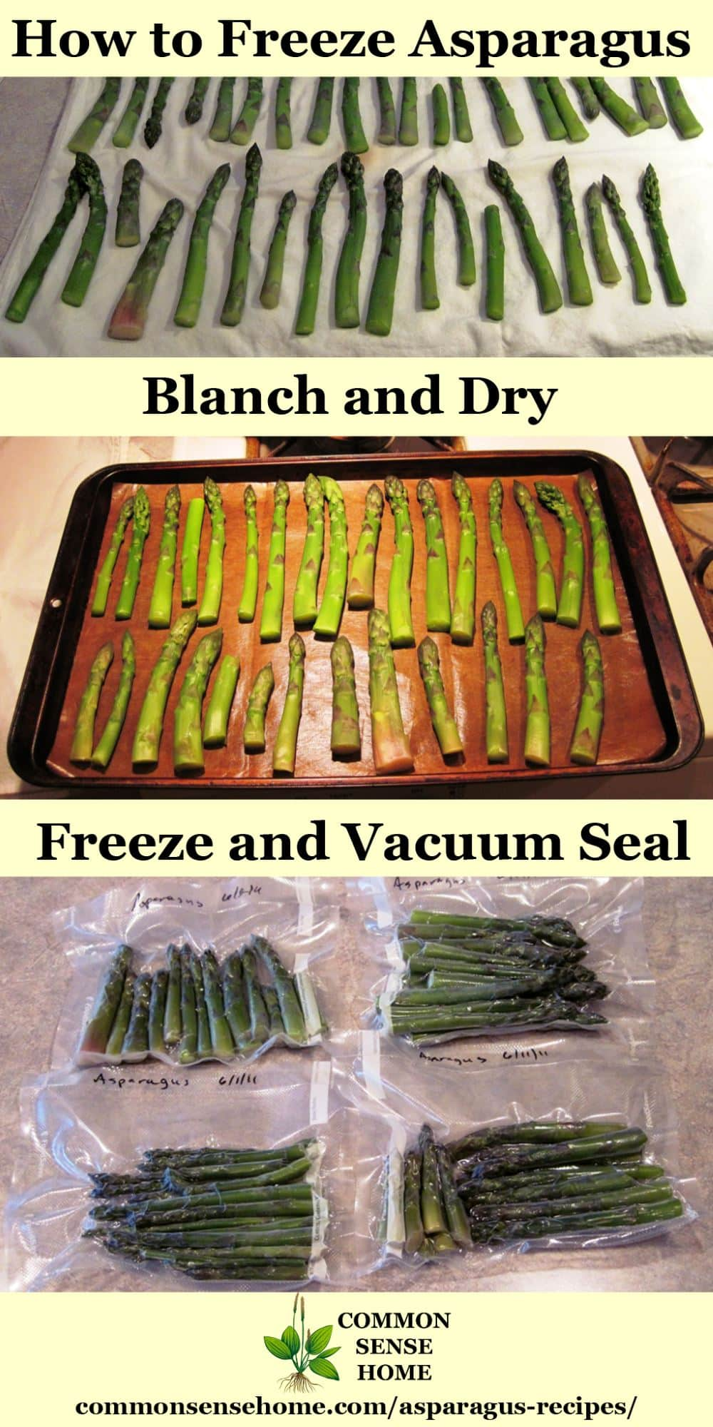 Asparagus freezing process