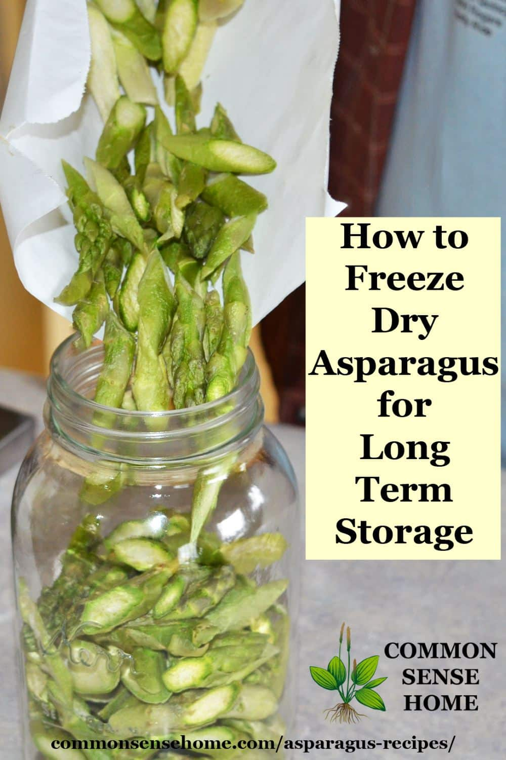 Storing freeze dried asparagus