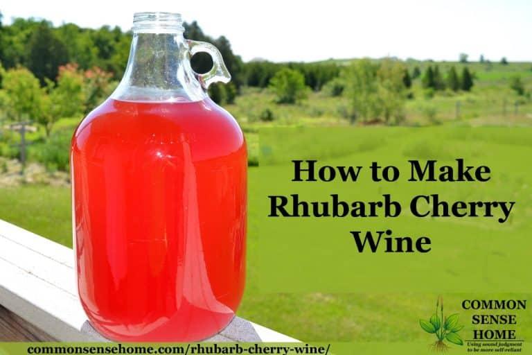 Rhubarb Cherry Wine – A Fun Twist on Rhubarb Wine