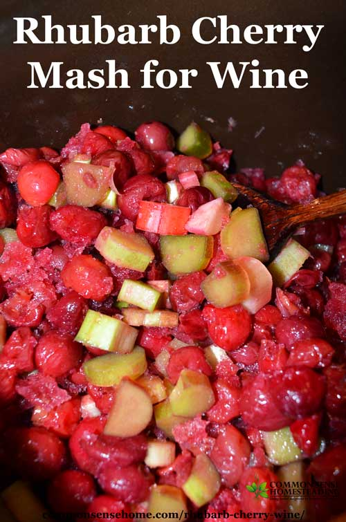 Rhubarb cherry wine is an easy country wine that combines two abundant local fruits - rhubarb and tart cherries - into a bright and fruity homemade wine.