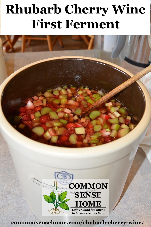 Rhubarb cherry mash fermenting