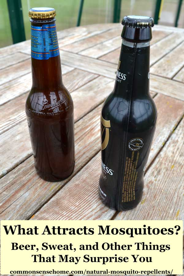 what attracts mosquitoes - two bottles of beer