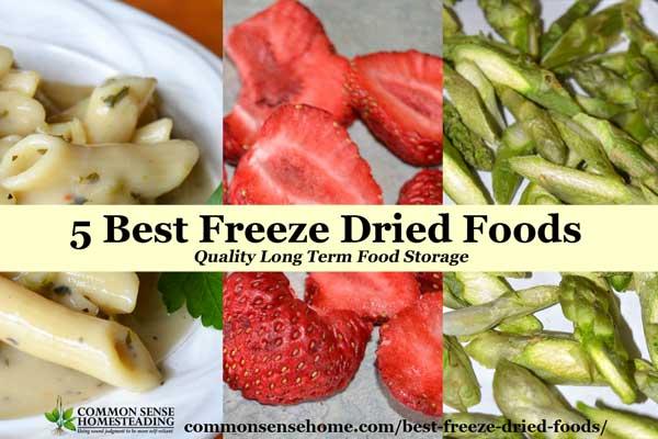 5 Best Freeze Dried Foods Quality Long Term Food Storage