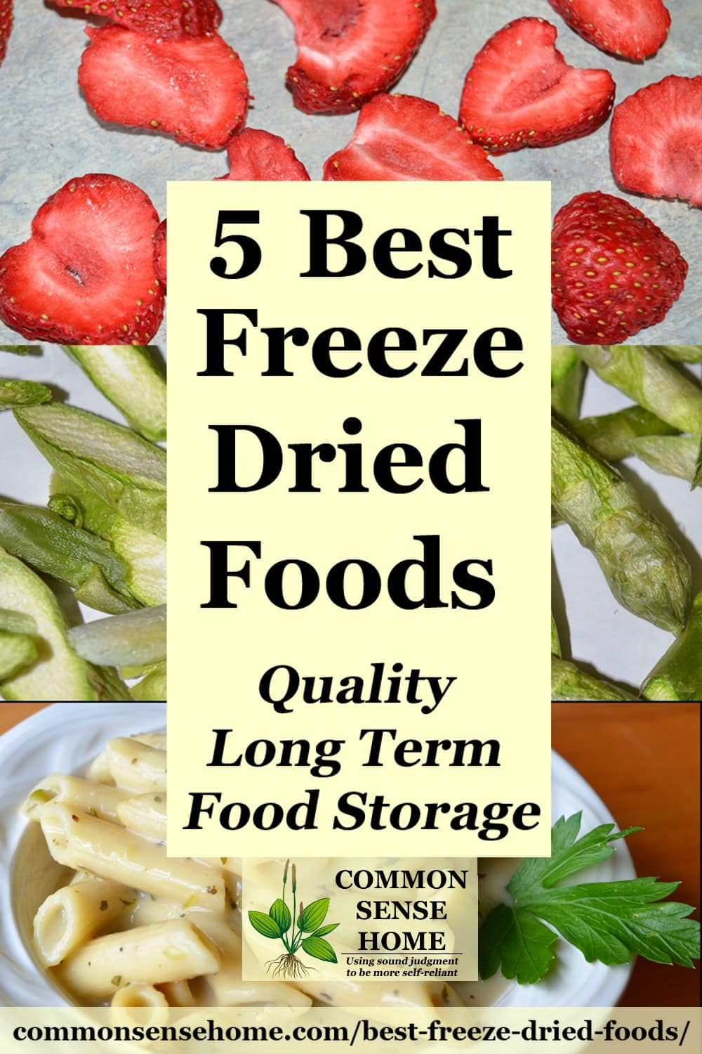 freeze dried food collage
