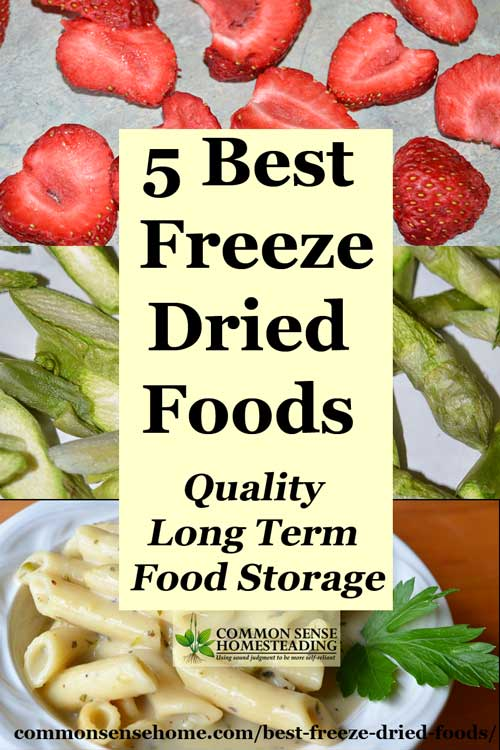 5 Best Freeze Dried Foods Quality Long Term Food Storage