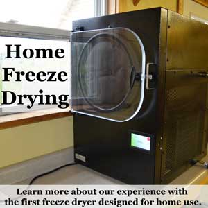 Freeze Dry at Home