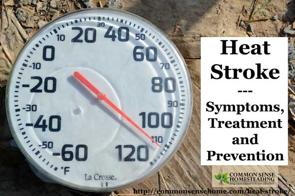 Heat stroke kills more people than hurricanes, tornadoes and floods. Protect yourself and your family by learning symptoms, prevention and treatment.