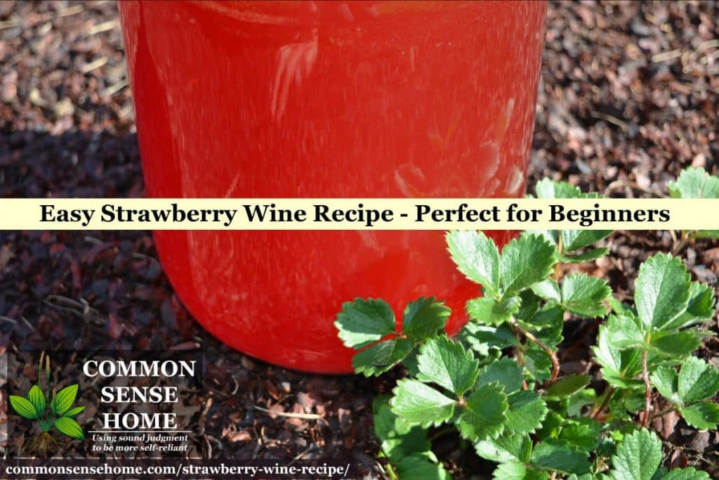 homemade strawberry wine