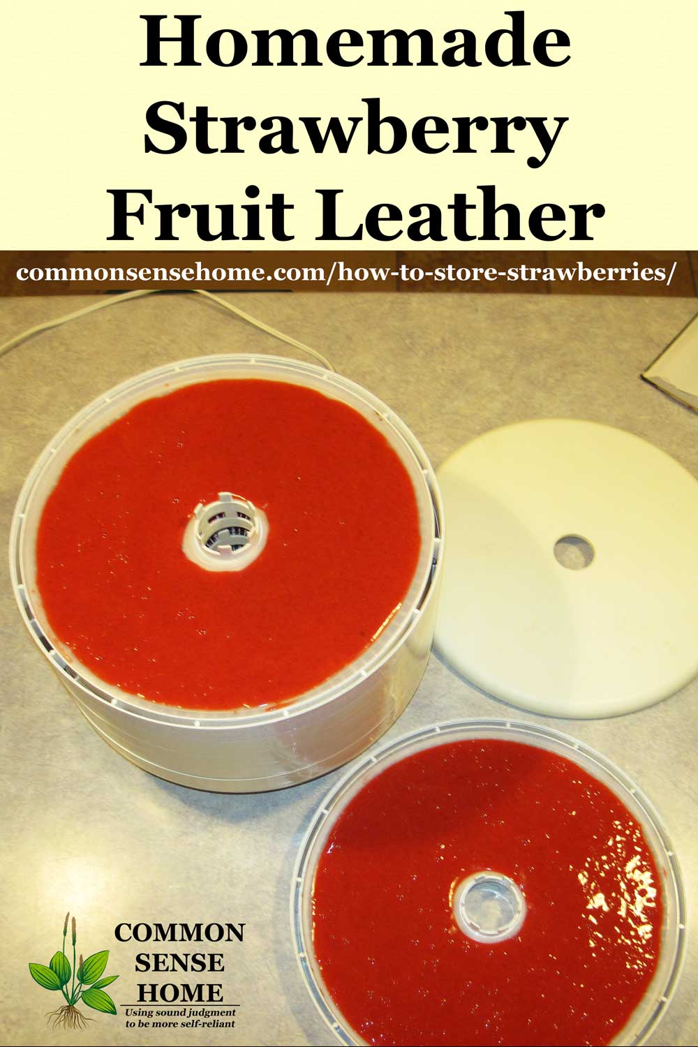 strawberry puree in dehydrator to make strawberry fruit leather