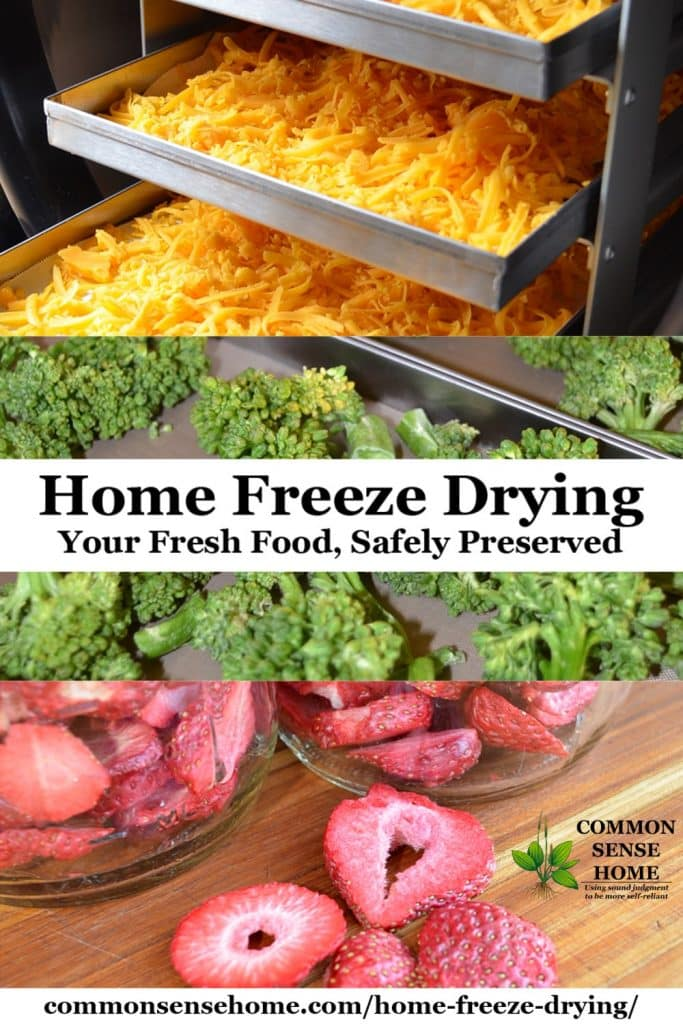 freeze dry food at home
