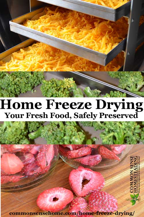 Home food preservation 10 ways to preserve food at home home freeze drying all the information including the messy bits you need to forumfinder Gallery