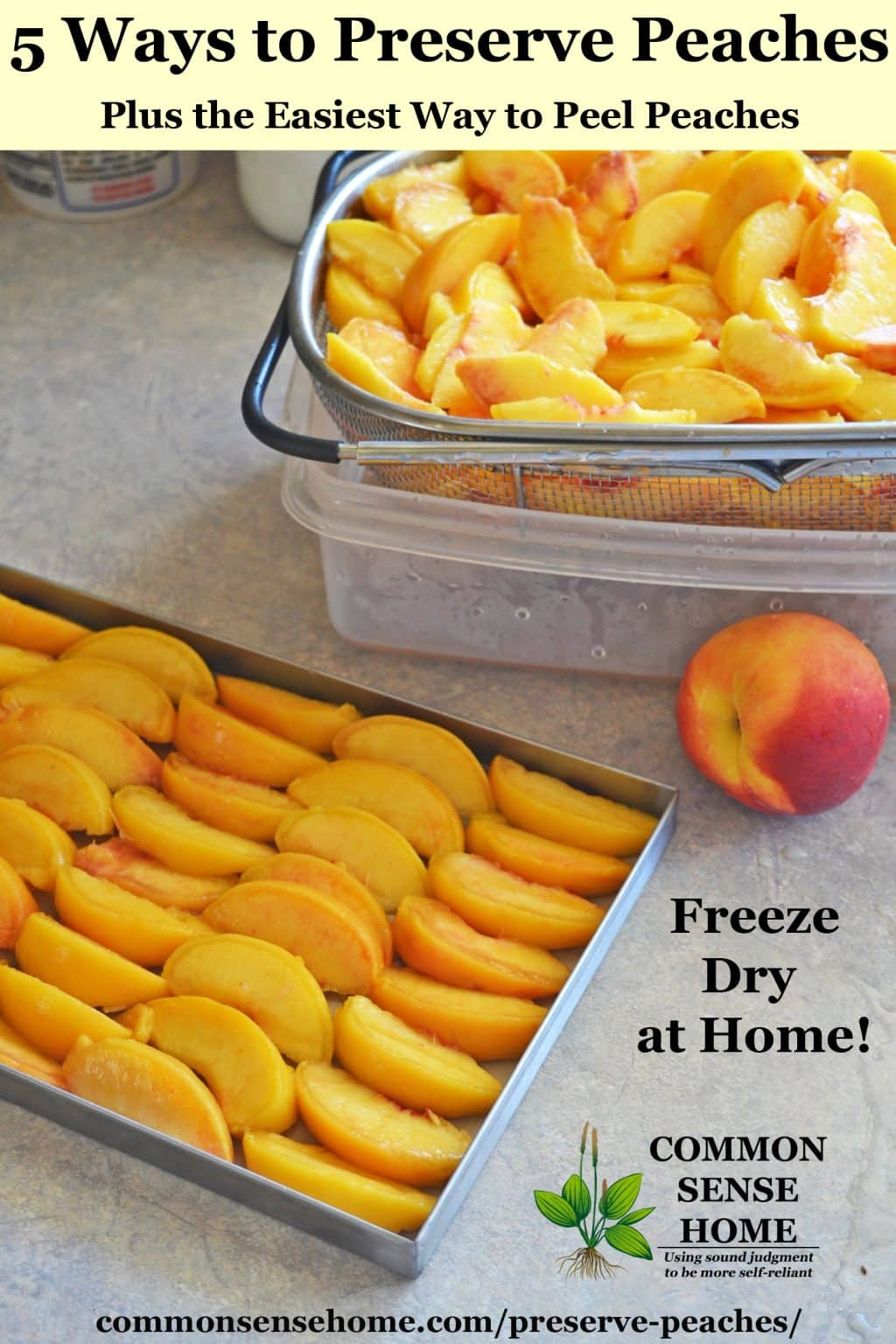 Peach slices prepared for freeze drying