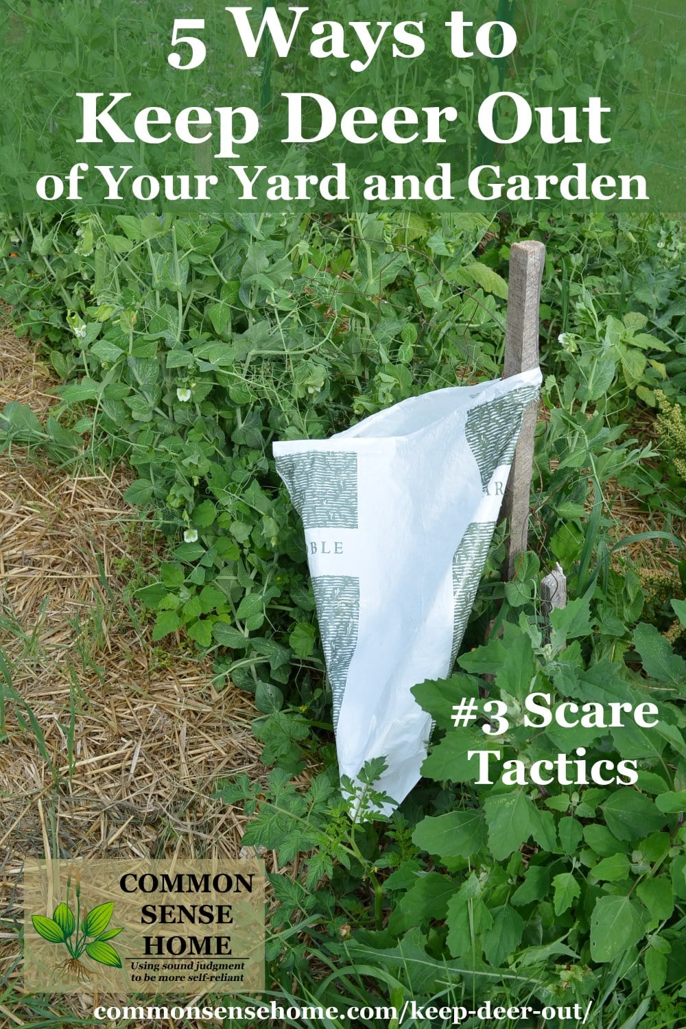 Keep Deer Out of Your Garden - 5 Deer Deterrent Tips and Tricks