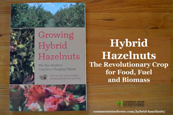 """""""Growing Hybrid Hazelnuts"""" challenges the reader to imagine a future where hazelnuts provide food, fuel and biomass while creating vibrant ecosystems."""