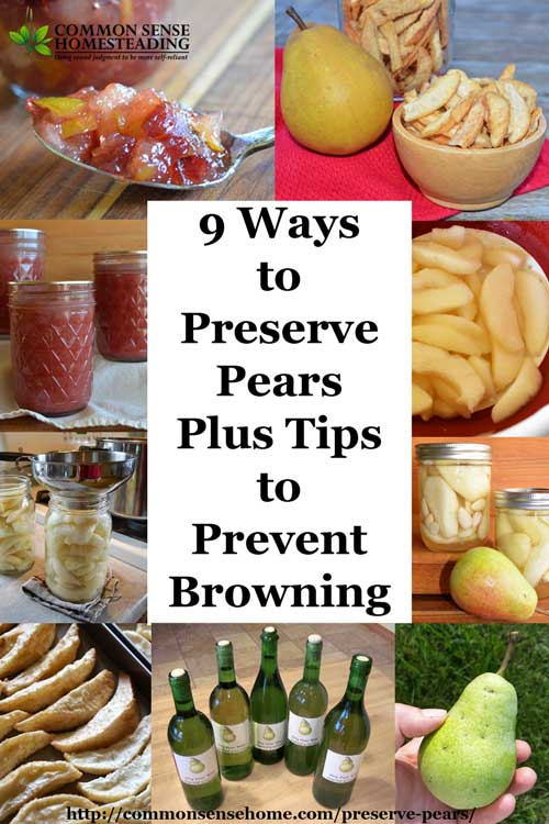 How to Preserve pears using canning, freezing, drying, freeze drying ...