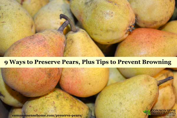 Preserve Pears as Pear Wine