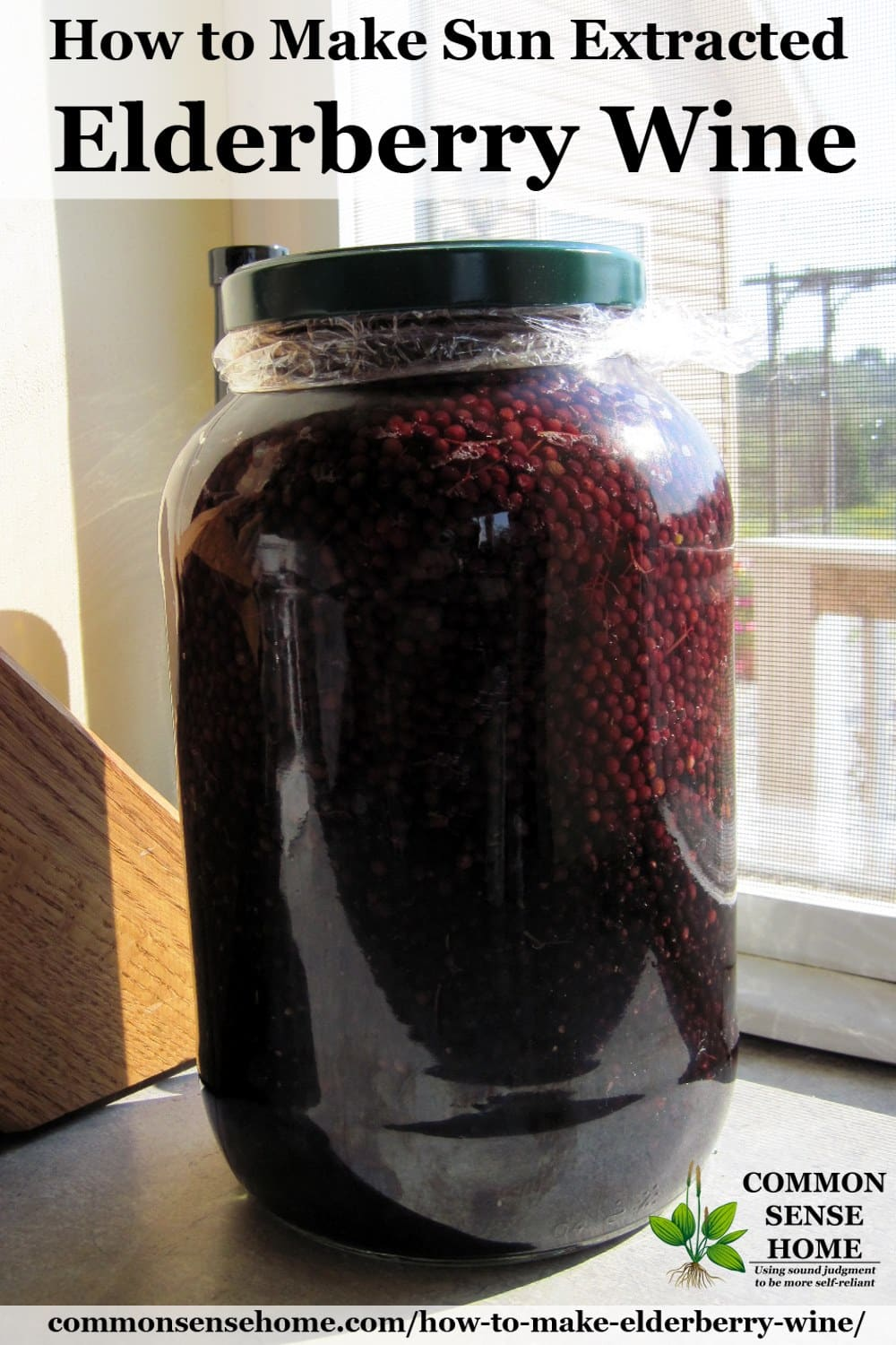 sun extracted elderberry wine